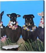 Aloha Teacup Chihuahuas Canvas Print