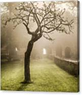 Alone In The Fog Canvas Print