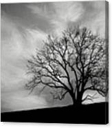 Alone On A Hill In Black And White Canvas Print