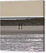 Alone On The Beach Canvas Print
