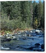 Along Deer Creek Canvas Print