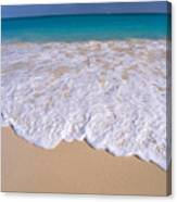 Along Shoreline Canvas Print