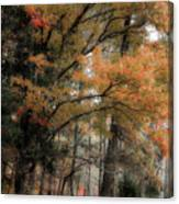 Along The Edge Of October Canvas Print