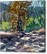 Along The Russian River Canvas Print