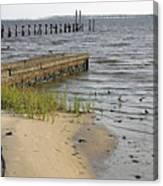 Along The Shore Of Biloxi Bay Canvas Print