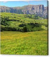 Alpe Di Siusi - Dolomiti Canvas Print
