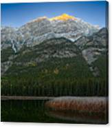 Alpenglow Over Frosty Reeds Canvas Print