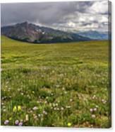 Alpine Meadow Before Mount Guyot Canvas Print