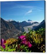Alpine Meadow Flowers Overlooking Glacier Canvas Print