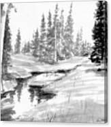 Alpine Meadow Canvas Print