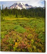 Alpine Meadows Canvas Print