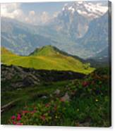 Alpine Roses In Foreground Canvas Print