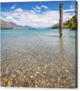 Alpine Scenery From Dart River Bed In Kinloch, New Zealand Canvas Print