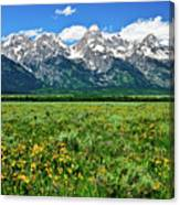 Alpine Spring Canvas Print