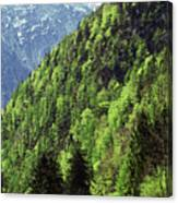 Alpine View In Green Canvas Print