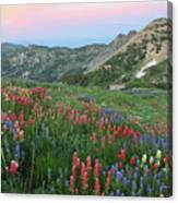 Alpine Wildflowers And View At Sunset Canvas Print