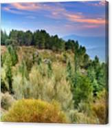 Alpujarras Forest At Sunset Canvas Print
