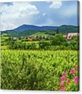 Alsace Landscape, France Canvas Print
