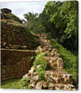 Altun Ha Maya Ruins Canvas Print