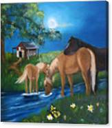 Alyssas Horses Canvas Print