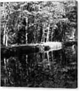 Am Alten Kanal Canvas Print