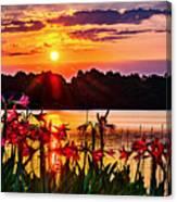 Amaryllis At Sunrise Over Lake Canvas Print