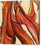 Amaryllis Bulb Canvas Print