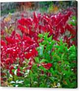 Amazing Nature Blessings Magic Colors Cherry Red Green Shrubs Plants Save  The Environment Canvas Print