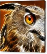 Amazing Owl Portrait Canvas Print