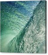 Amazing Wave Canvas Print