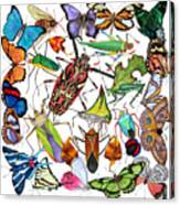 Amazon Insects Canvas Print