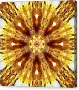 Amber Sun. Digital Art 3 Canvas Print