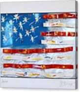 America Edition 4 Canvas Print