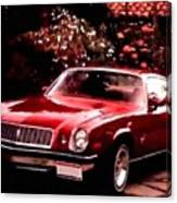 American Dream Cars Catus 1 No. 1 H B Canvas Print