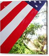 American Flag 1 Canvas Print