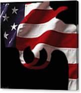 American Gun Canvas Print