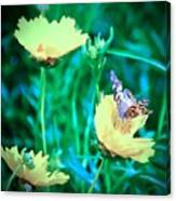 American Lady On Coreopsis Canvas Print
