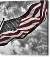 American Wave Sc Canvas Print