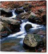 Amicalola Stream Canvas Print