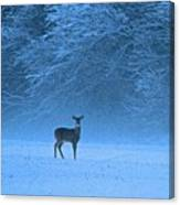 Amidst The Swirling Snow Canvas Print