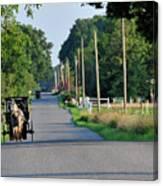 Amish Buggy Sunny Summer Canvas Print