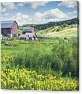 Amish Country Farm Warrens Canvas Print