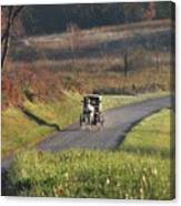 Amish Country Horse And Buggy In Autumn Canvas Print