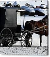 Amish Crossing Canvas Print