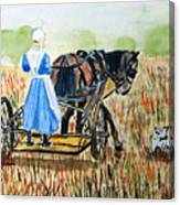 Amish Girl With Buggy Canvas Print