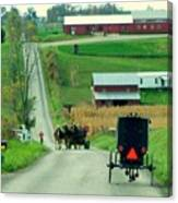 Amish Horse And Buggy Farm Canvas Print