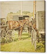 Amish Wagons Canvas Print