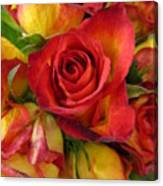 Among The Rose Leaves Canvas Print