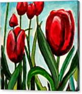 Among The Tulips Canvas Print