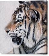 Amur Canvas Print
